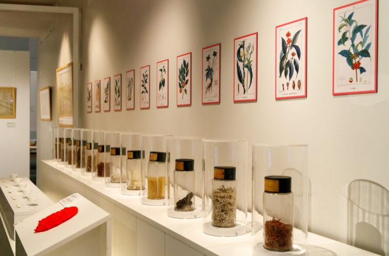 Exposition Apothicaires & Pharmaciens