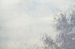 Oeuvre de Zhu Hong, Les lignes de l'eau - Musée d'arts de Nantes
